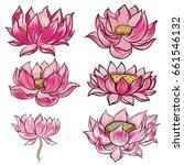 hand drawn lotus flower vector... | Shutterstock .eps vector #661546132