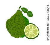 bergamot with slice flat design ... | Shutterstock .eps vector #661773646