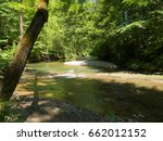 river in the forest | Shutterstock . vector #662012152