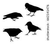 set vector silhouette of a crow ... | Shutterstock .eps vector #662141476