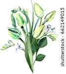 watercolor hand drawn white and ... | Shutterstock . vector #662149015