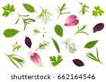 fresh spices and herbs isolated ... | Shutterstock . vector #662164546