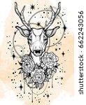 hand drawn trendy vector... | Shutterstock .eps vector #662243056