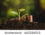 coins in soil with young plant. ... | Shutterstock . vector #662336515