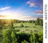 forest and field panorama.... | Shutterstock . vector #662372752