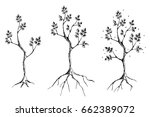 vector set of hand drawn... | Shutterstock .eps vector #662389072