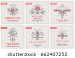 flying bird logo design with... | Shutterstock .eps vector #662407252