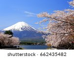 mount fuji with cherry blossom... | Shutterstock . vector #662435482