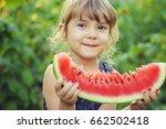 a child eats watermelon.... | Shutterstock . vector #662502418