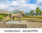 casela adventure park ... | Shutterstock . vector #662665996