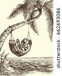 beach vector illustration  palm ...   Shutterstock .eps vector #662693086