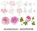 vector flower elements set... | Shutterstock .eps vector #662696548