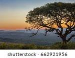 Sunset Landscape With Marula...