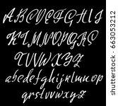 hand drawn elegant calligraphy... | Shutterstock .eps vector #663053212