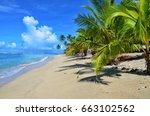 samoa  pacific island | Shutterstock . vector #663102562