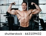 brutal strong bodybuilder... | Shutterstock . vector #663109432
