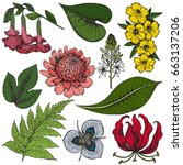 vector collection of hand drawn ... | Shutterstock .eps vector #663137206