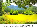 view of the beautiful clear... | Shutterstock . vector #663147112