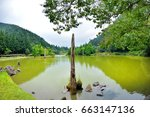 view of the beautiful clear... | Shutterstock . vector #663147136