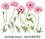 poppy flowers. set of colored... | Shutterstock .eps vector #663188782
