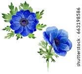 wildflower anemone flower in a... | Shutterstock . vector #663198586