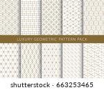 luxury elegant geometric vector ... | Shutterstock .eps vector #663253465