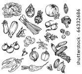 vegetables | Shutterstock .eps vector #66332686