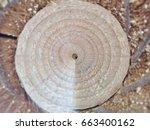 Abstract Of Circle Wood Hole