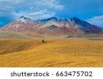 nomadic journey in steppe of... | Shutterstock . vector #663475702