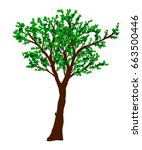 green vector tree isolated on... | Shutterstock .eps vector #663500446