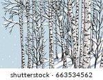 birch grove in the winter | Shutterstock .eps vector #663534562