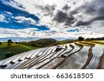 rice fields on terraced at... | Shutterstock . vector #663618505