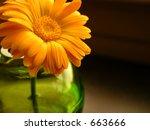 flower in vase | Shutterstock . vector #663666