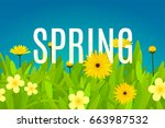 spring background template with ... | Shutterstock .eps vector #663987532