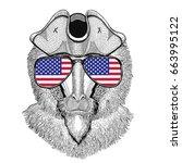 monkey  baboon  dog ape  ape... | Shutterstock . vector #663995122