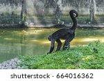 black young monkey at zoo ... | Shutterstock . vector #664016362