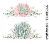 watercolor vintage succulents... | Shutterstock . vector #664050232