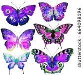 beautiful violet butterflies ... | Shutterstock . vector #664098196