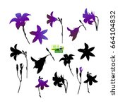 set of silhouettes of flowers.... | Shutterstock .eps vector #664104832