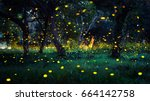 Stock photo firefly flying in the forest fireflies in the bush at night in prachinburi thailand long exposure 664142758