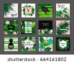 set of summer tropical designs. ... | Shutterstock .eps vector #664161802