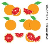 grapefruit illustration vector... | Shutterstock .eps vector #664198906