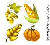 vector fruits and vegetables on ... | Shutterstock .eps vector #664208692