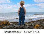 a little boy is looking out at... | Shutterstock . vector #664244716
