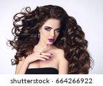 healthy beauty hair. beautiful... | Shutterstock . vector #664266922