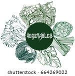 vegetables contour drawing... | Shutterstock .eps vector #664269022