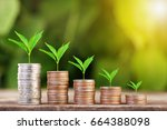 tree growing on coins stack... | Shutterstock . vector #664388098