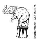Circus Elephant Illustration....