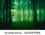 strange fog formations in the... | Shutterstock . vector #664469986