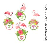 offer for summer sale with...   Shutterstock .eps vector #664472698